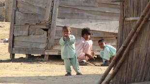 أطفال من باكستان