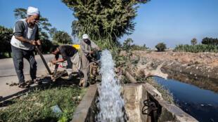 مزارعون يستعملون مياه نهر النيل في مصر