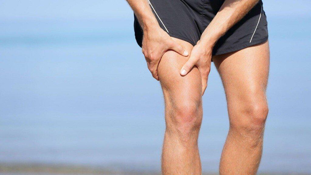 عضلة الفخذ