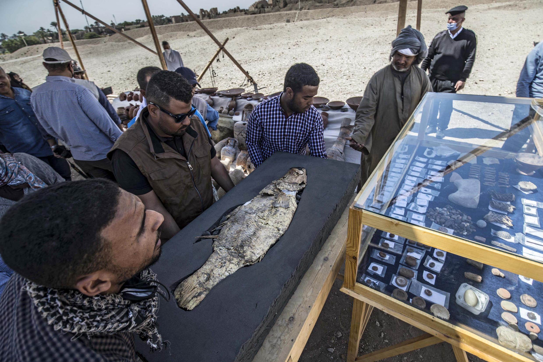 السمكة الذهبية ومقتنيات من مدينة الحرفيين الفرعونية