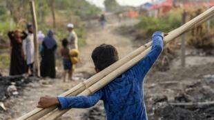 لاجئ  يحمل عيدان البامبو إلى مأوى مؤقت بعدما تعرّض مخيّم الروهينغا إلى حريق كبير في نيودلهي، الهند ( 14 يونيو 2021)