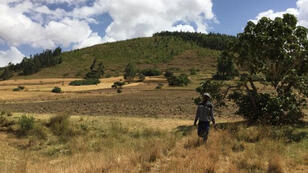 ethiopie_forestation