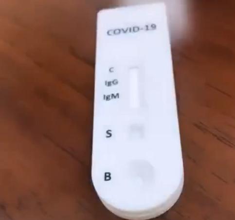 corona Inspection device
