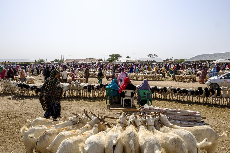 """سوق تجاري في هرجيسا عاصمة """"صوماليلاند"""""""