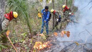 الرئيس البوليفي يشارك باطفاء الحرائق