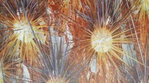 قشرة جذع شجرة للفنان الفرنسي سيدريك بوليه - Cédric Pollet - Ecorce d'arbre