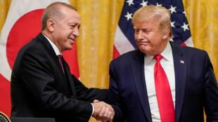 ترامب وأردوغان في واشنطن