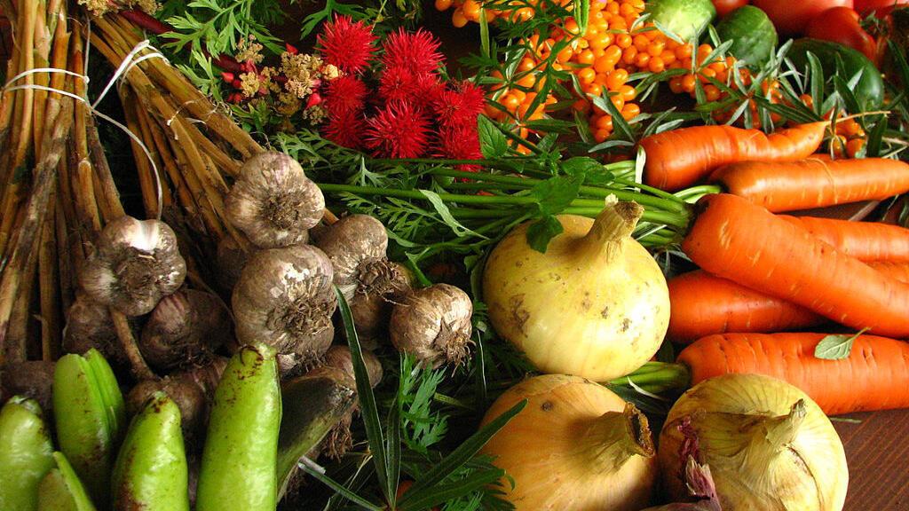 مُنتجات الزراعة العضوية فرضت نفسها  شيئا فشيئا في أسواق الاتحاد الأوروبي