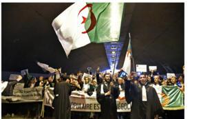 حامون جزائريون يتظاهرون مع لافتات وأعلام وطنية خلال مظاهرة ضد الرئيس المريض عبد العزيز بوتفليقة في وسط العاصمة الجزائر في 23 مارس