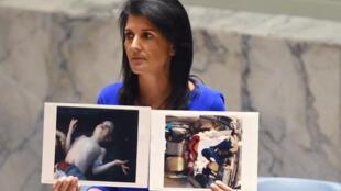 السفيرة الأمريكية لدى الأمم المتحدة نيكي هايلي ترفع صورا لضحايا مدنيين قتلوا إثر هجوم كيميائي في سوريا