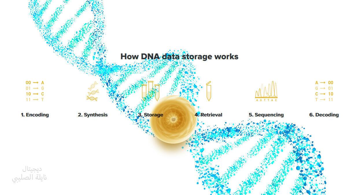 الحمض النووي لحفظ البيانات