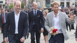 الأمير ويليام (على اليسار) رفقة لأميرهاري