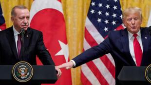 ترامب وإردوغان في واشنطن