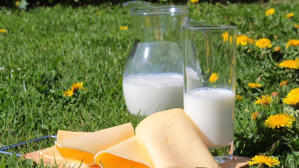 produits_laitiers