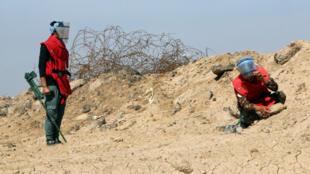 فريق لنزع الألغام (صورة تعبيرية)