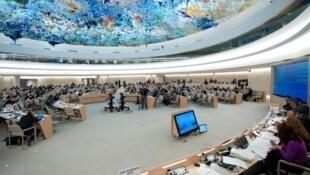 مجلس حقوق الانسان في جنيف
