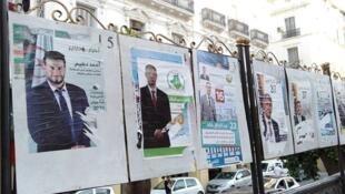 Elections législatives Algérie 9