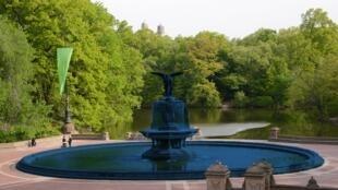 صفحة Central Park