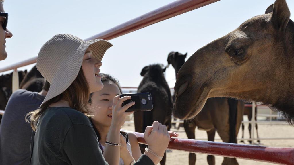 سياح خلال مهرجان الظفرة في أبوظبي