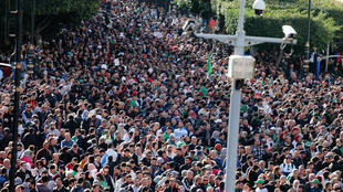 المظاهرات في الجزائر