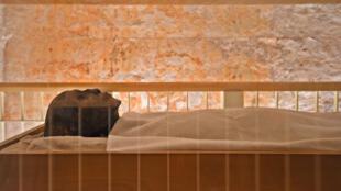 مومياء مصرية قديمة من عهد الفرعون توت عنخ آمون