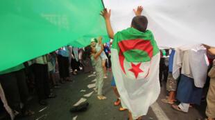 طفل جزائري يحمل علم بلاده