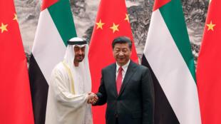 الرئيس الصيني وولي عهد أبوظبي
