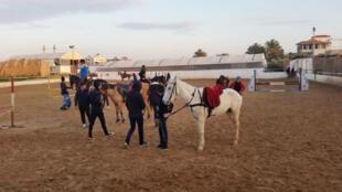 نادي لتعلم ركوب الخيل في غزة (تصوير رامتان عوايطية)