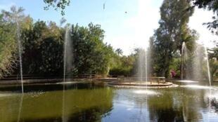Jardin Landon 9
