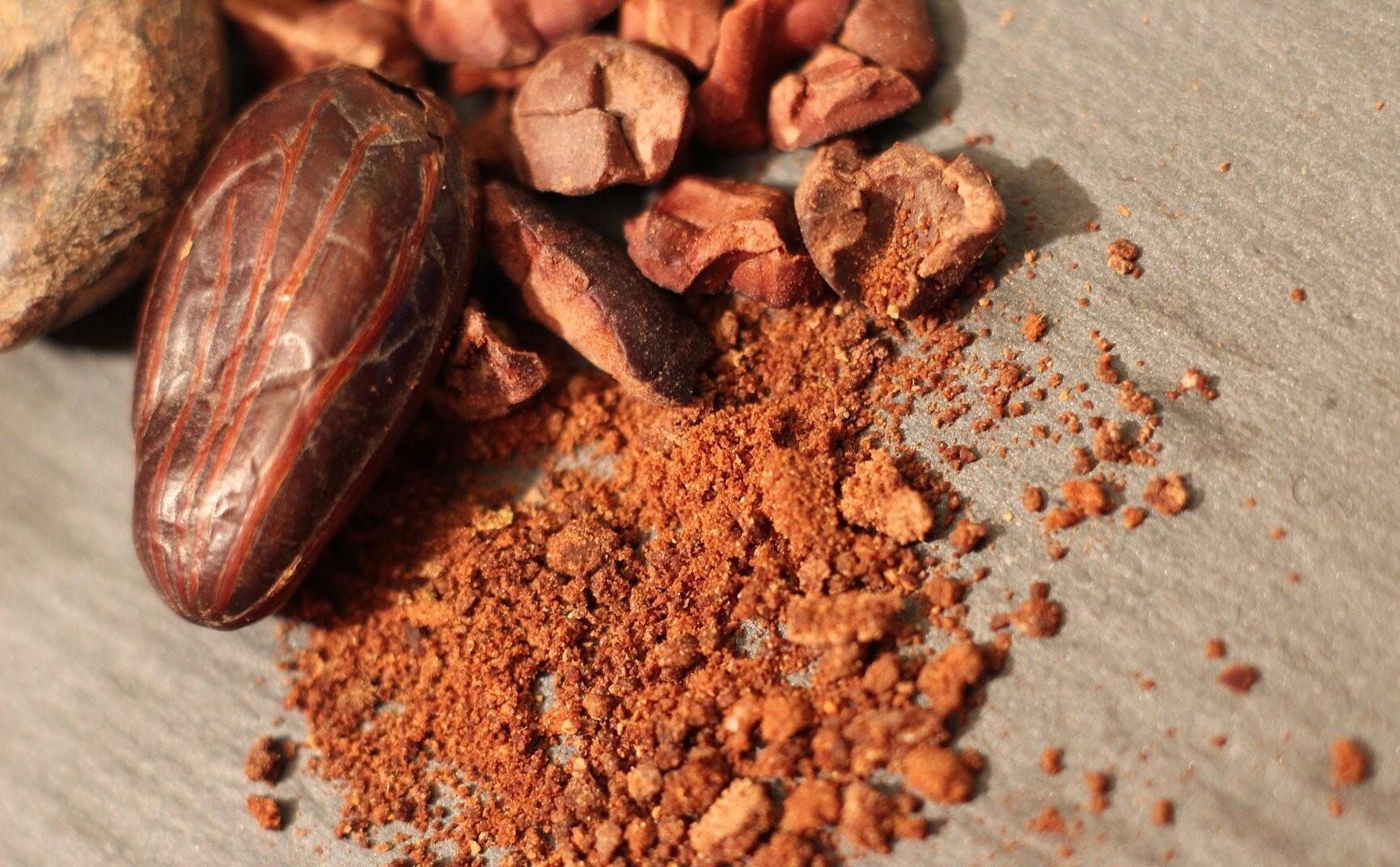 cocoa_graines_poudre