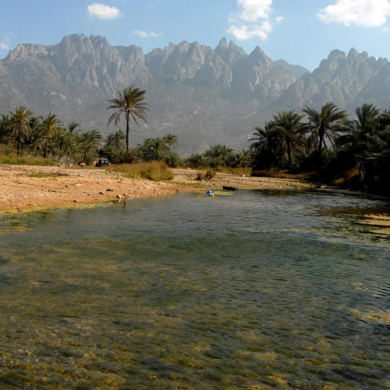سقطرى من موقع أثري وبيئي متميز عالميا إلى غنيمة حرب