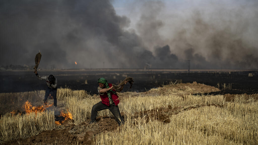 syrie_hasakeh_incendie_agriculture06_2019