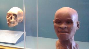لوزيا المتحجرة البشرية في متحف ريو