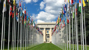 مكتب الأمم المتحدة في جنيف