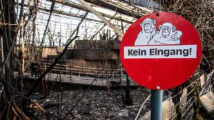 حديقة الحيوانات الألمانية التي نشب فيها حريق