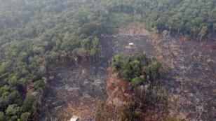 صورة لغابات الأمازون أخذت يوم 23 أغسطس 2019