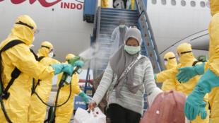 رش ركاب طائرة قادمة من يوهان برذاذ طبي - إندونيسيا