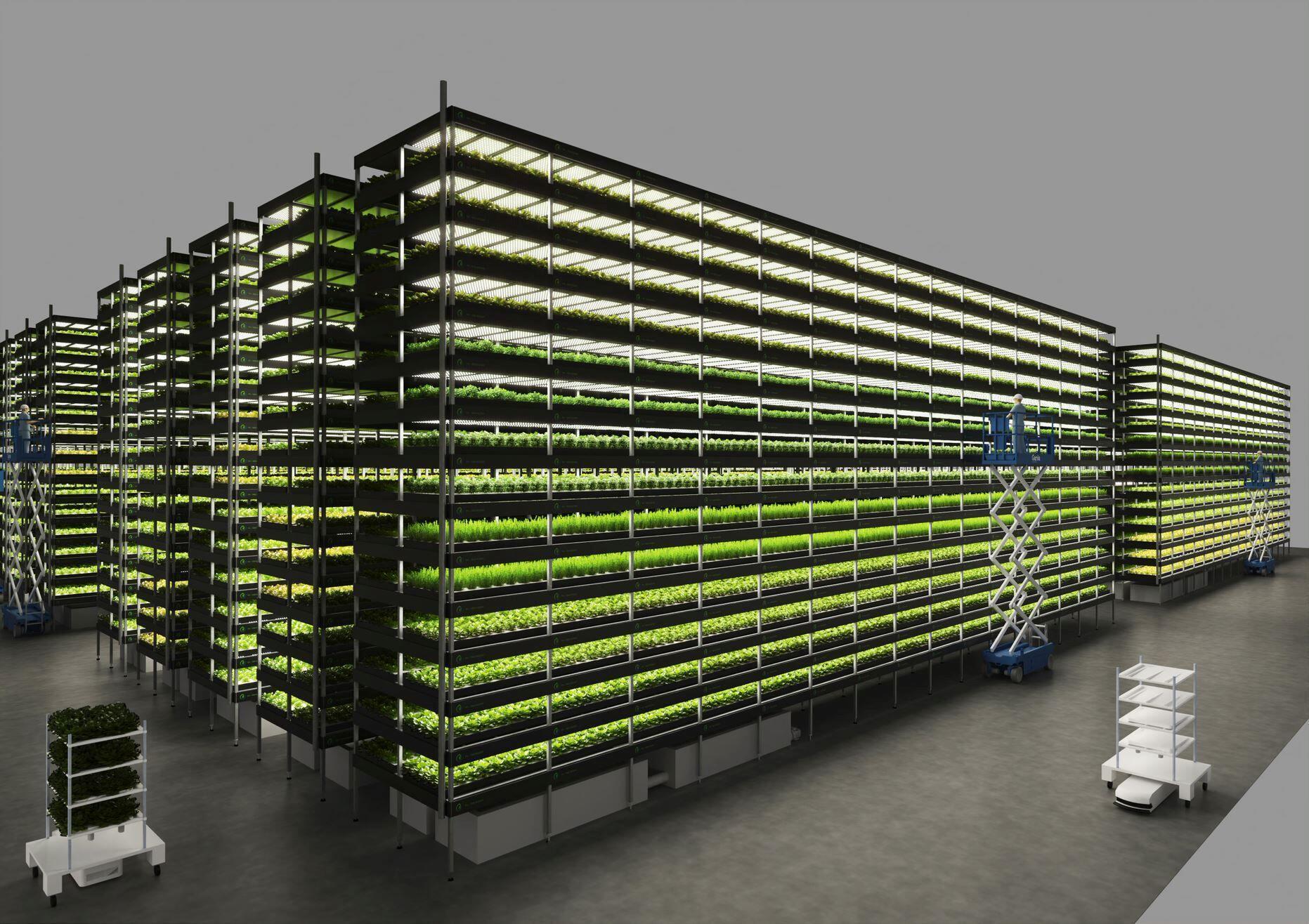 nordic_harvest_agriculture_verticale