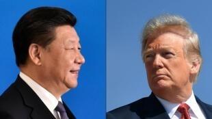 الرئيسان الأمريكي ترامب والصيني جين بينغ