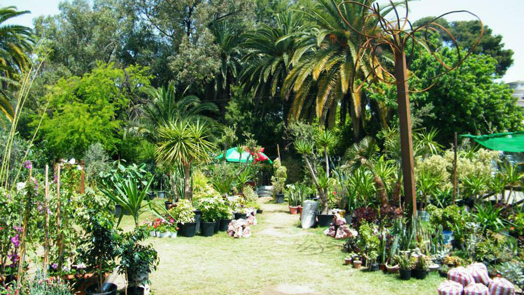 حديقة البلفدير في العاصمة التونسية