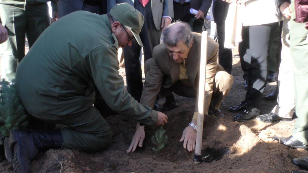 د. الحافي يشرف على إطلاق إحدى عمليات  إحياء شجرة الأرز المغربية