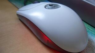فأرة كمبيوتر