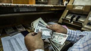 رجل يعدّ أوراق نقدية مصرية