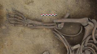 بقايا جثث في منطقة آشنهايم في الألزاس، فرنسا