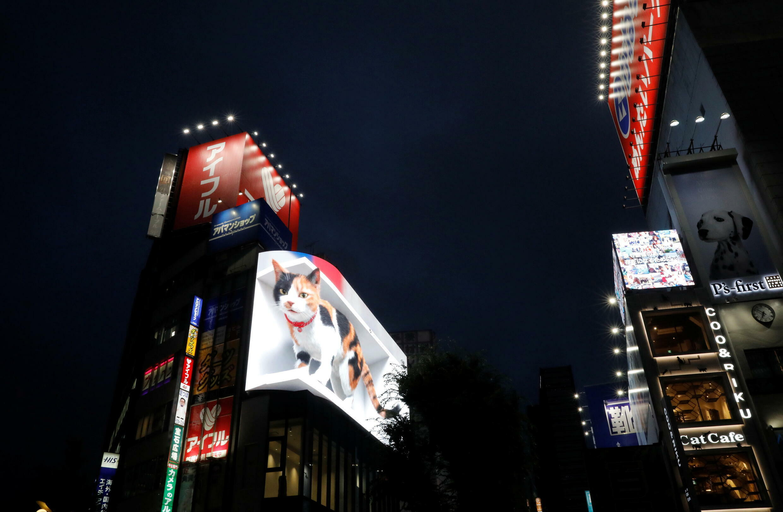 JAPAN-3D-CAT
