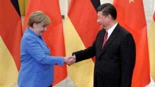 الرئيس الصيني والمستشارة الألمانية
