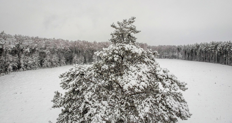 siberie paysage -2