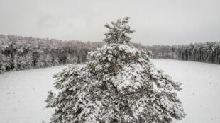 منظر من سيبيريا