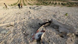 حطام من الطائرة السورية التي تم اسقاطها يوم 14-08-2019