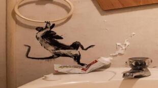 فأر يدوس على معجون الأسنان في الحمّام